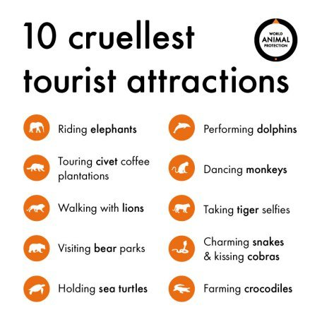 10-cruellest-attractions