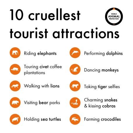 10-cruellest-attractions
