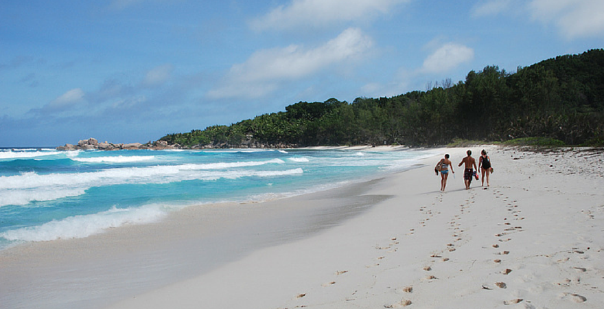 Top 5 Reasons To Volunteer In Seychelles