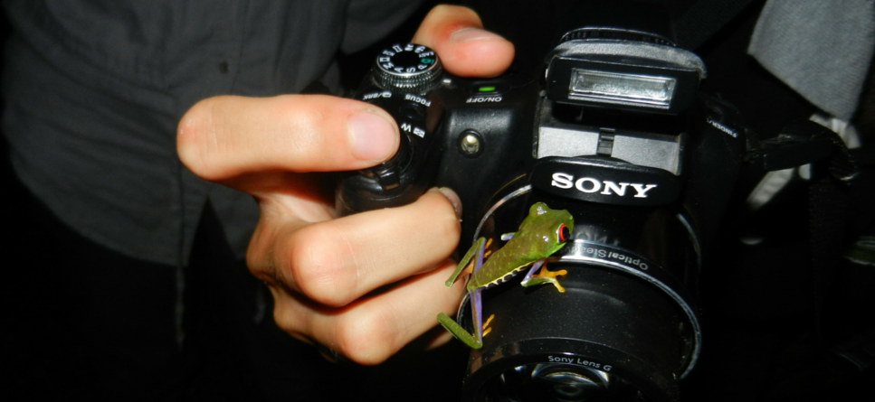 Frog climbing onto the camera