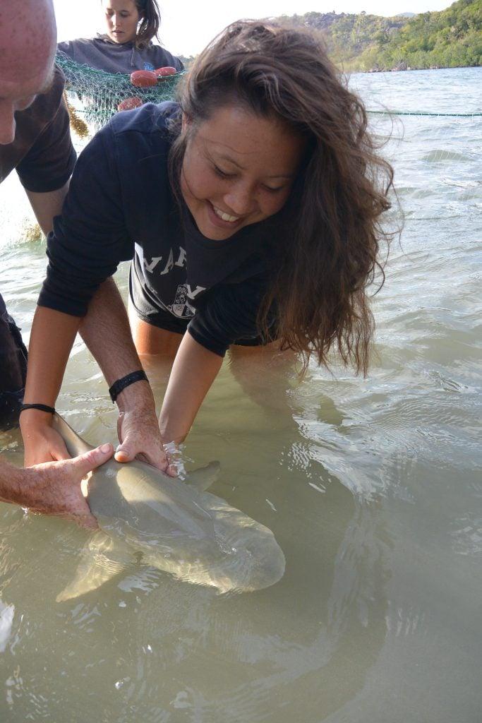 Handling a small shark