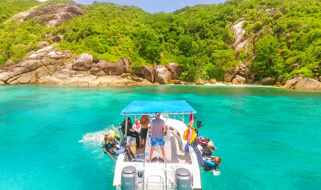 marine conservation expedition in the seychelles gvi uk