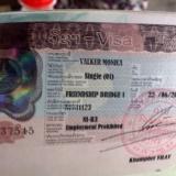 Success! New visa!