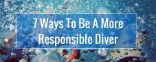 7 Ways To Be A More Responsible Diver