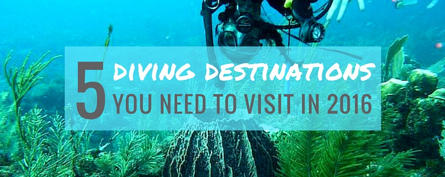 5 Diving Destinations You Need To Visit in 2016 | GVI