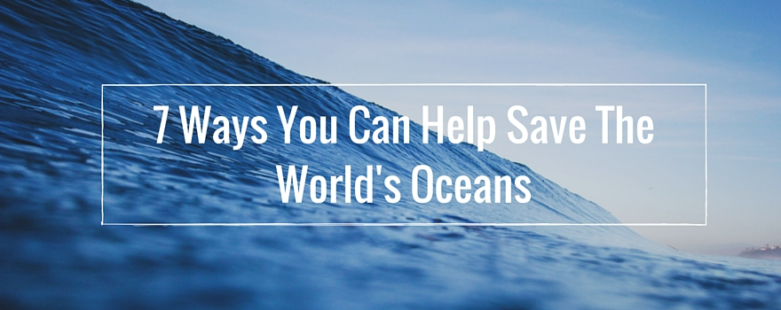 7 Ways You Can Help Save The World's Oceans