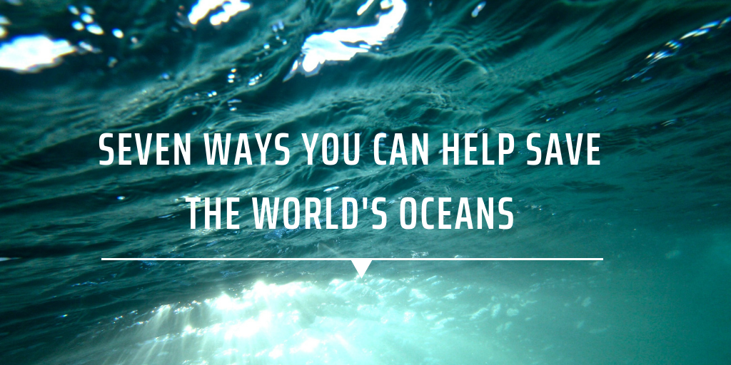 Seven ways you can help save the world's oceans