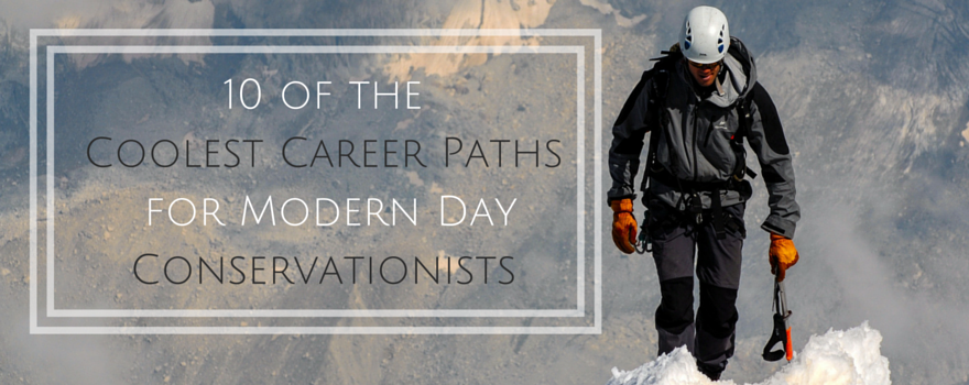 10 of The Coolest Career Paths for Modern Day Conservationists ...