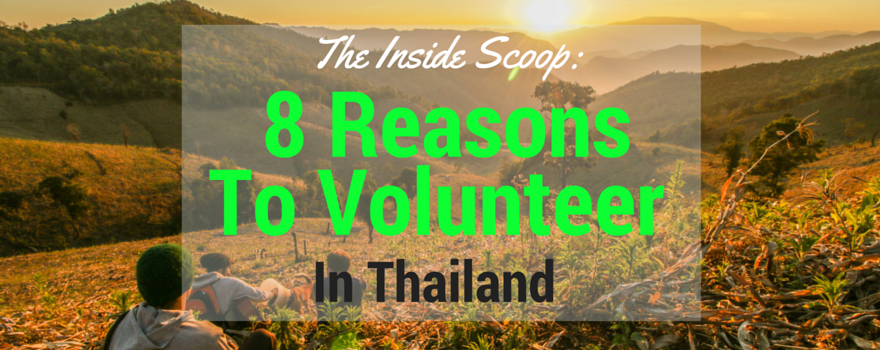 The Inside Scoop: 8 Reasons Why You Should  Volunteer In Thailand