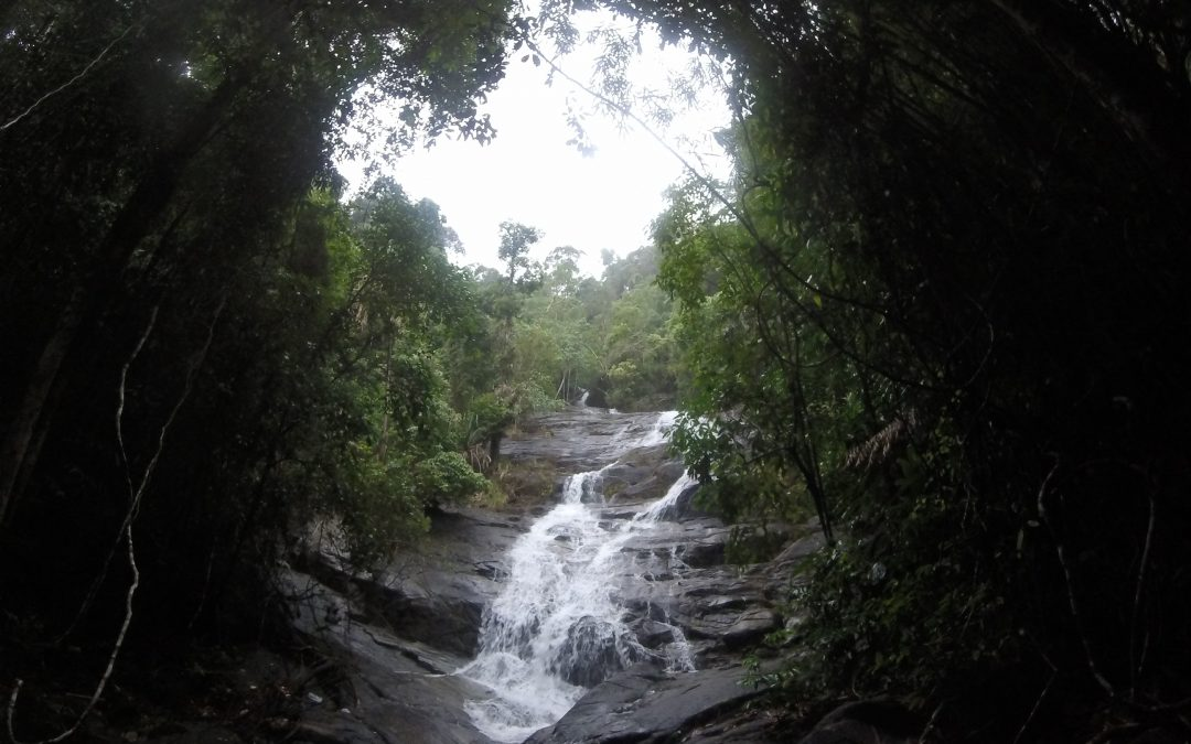 Chasing Waterfalls…
