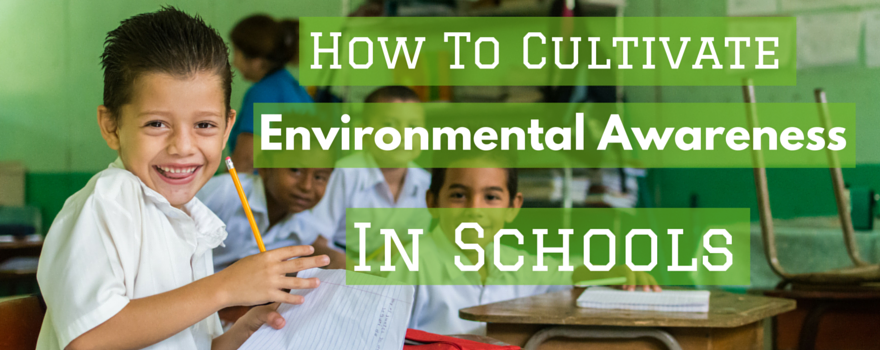 How To Cultivate Environmental Awareness In Schools