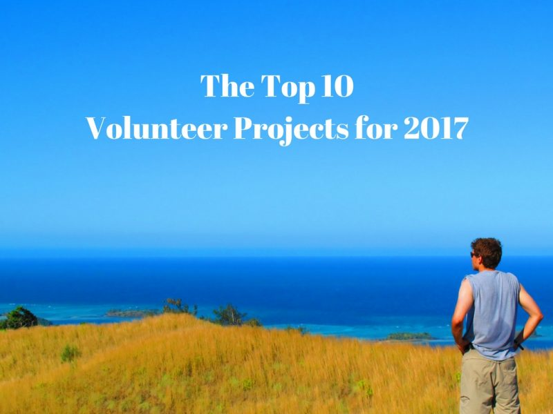 The Top 10 Volunteer Projects for 2017