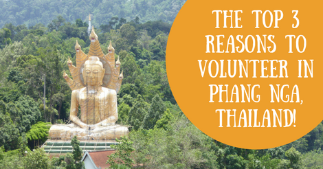 The Top 3 Reasons to Volunteer In Phang Nga
