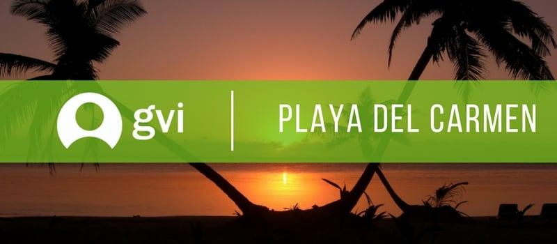 GVI's vet program for two weeks in Playa del Carmen, Mexico