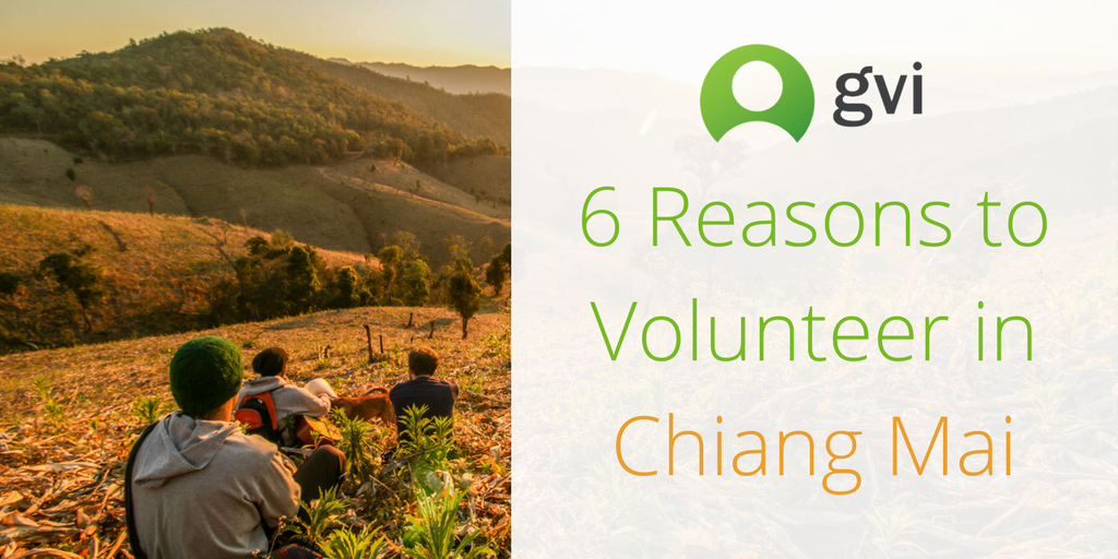 6 Reasons to Volunteer in Chiang Mai