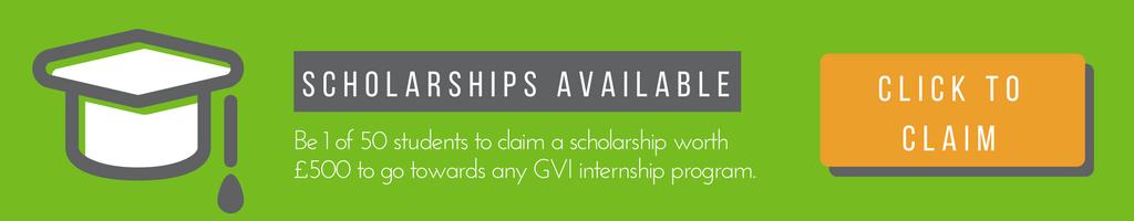 gvi internship scholarships available