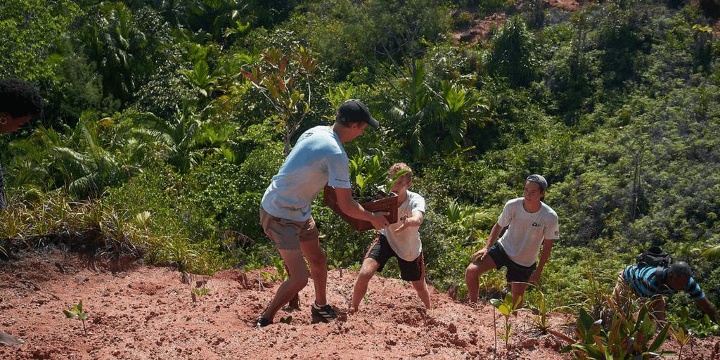 Conservation Volunteer Uk Island