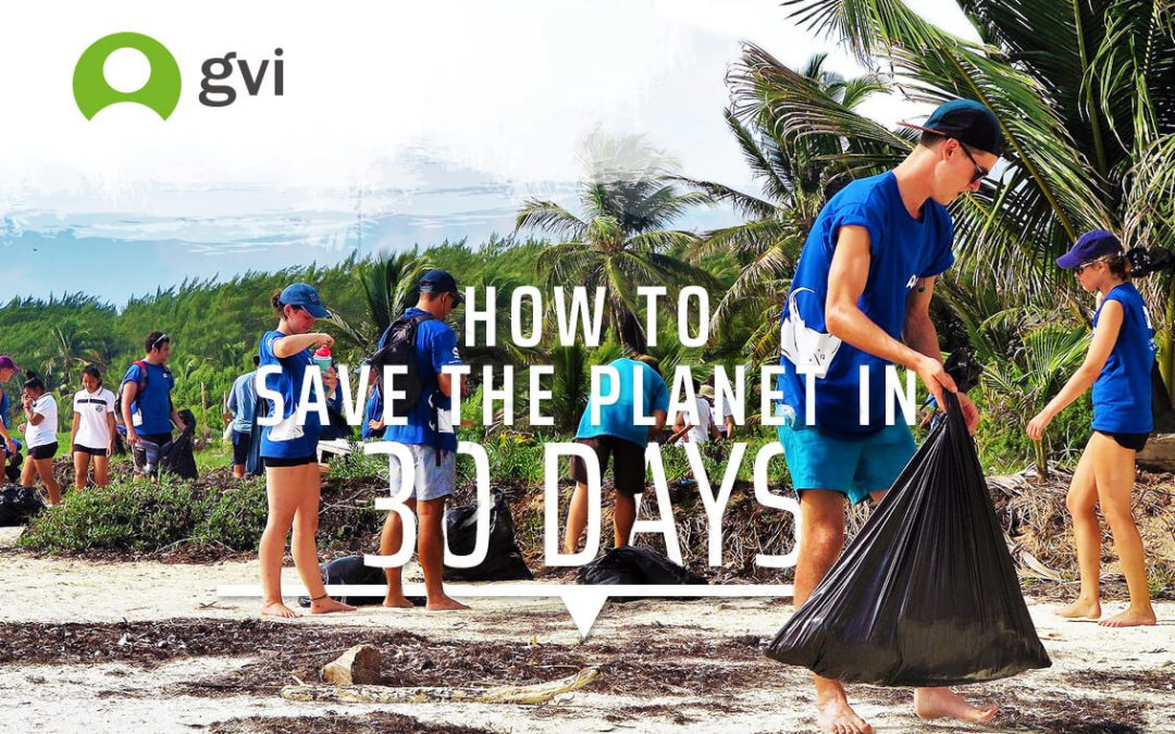 How To Save The Planet In 30 Days