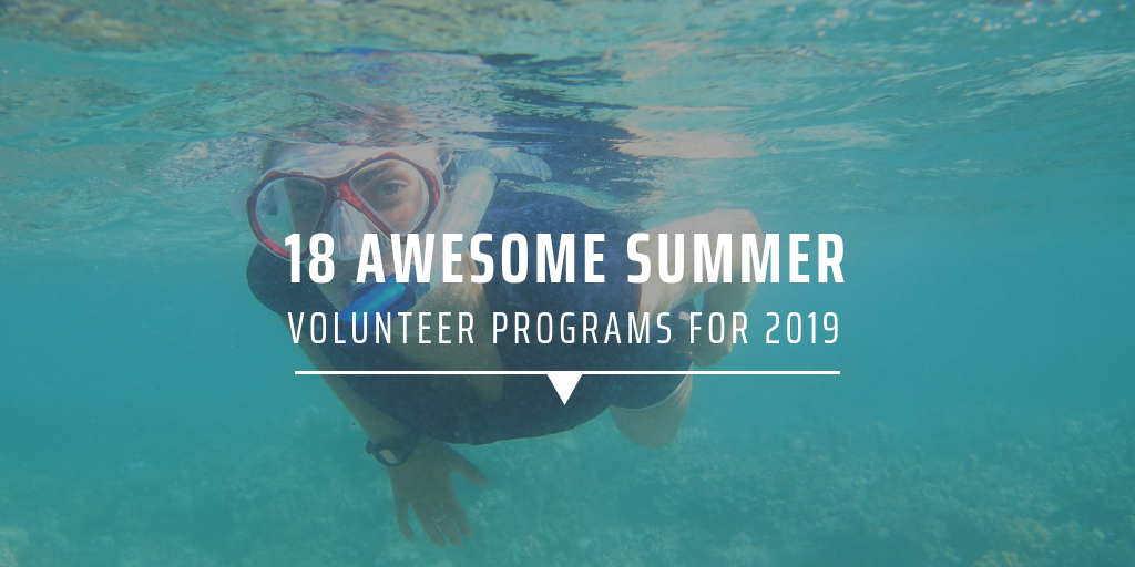 18 awesome summer volunteer programs for 2019