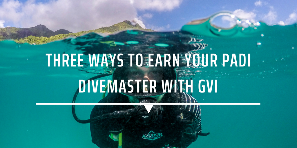 Three ways to earn your PADI Divemaster with GVI