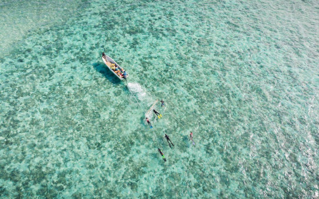 Manta Tow Surveys Around Fiji