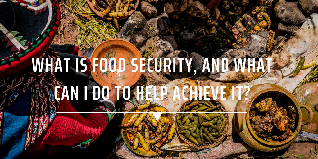 What is food security, and what can I do to help achieve it?