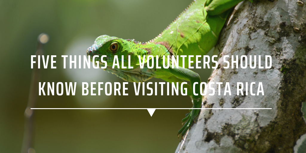Five things all volunteers should know before visiting Costa Rica