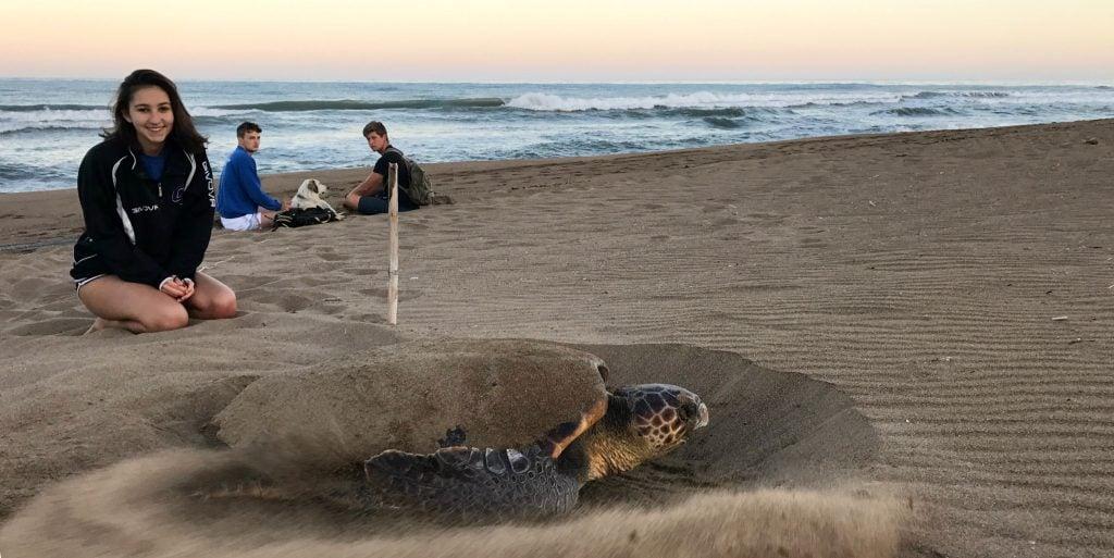 A GVI volunteer watches a loggerhead turtle nest.