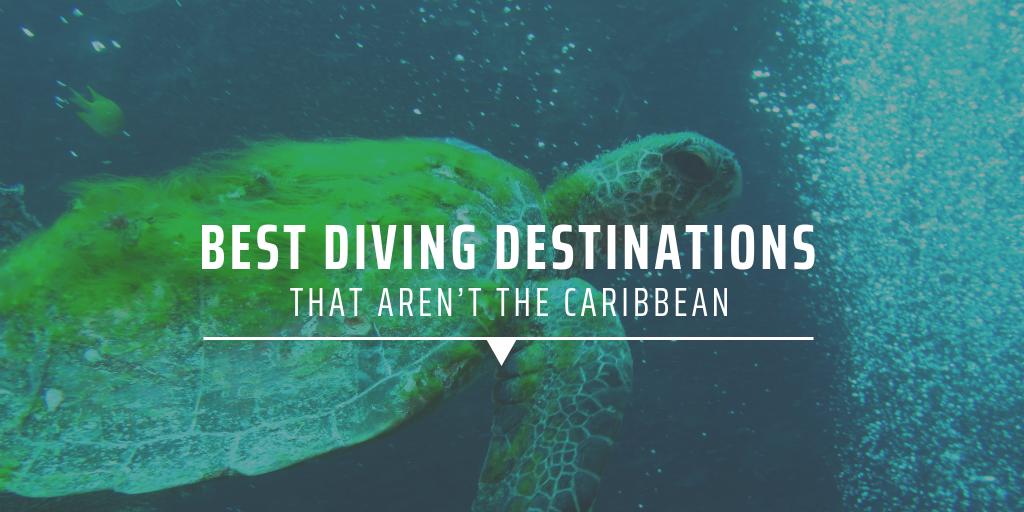 Best diving destinations that aren't the Caribbean