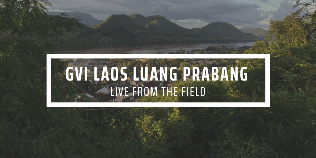 Highlights from Laos