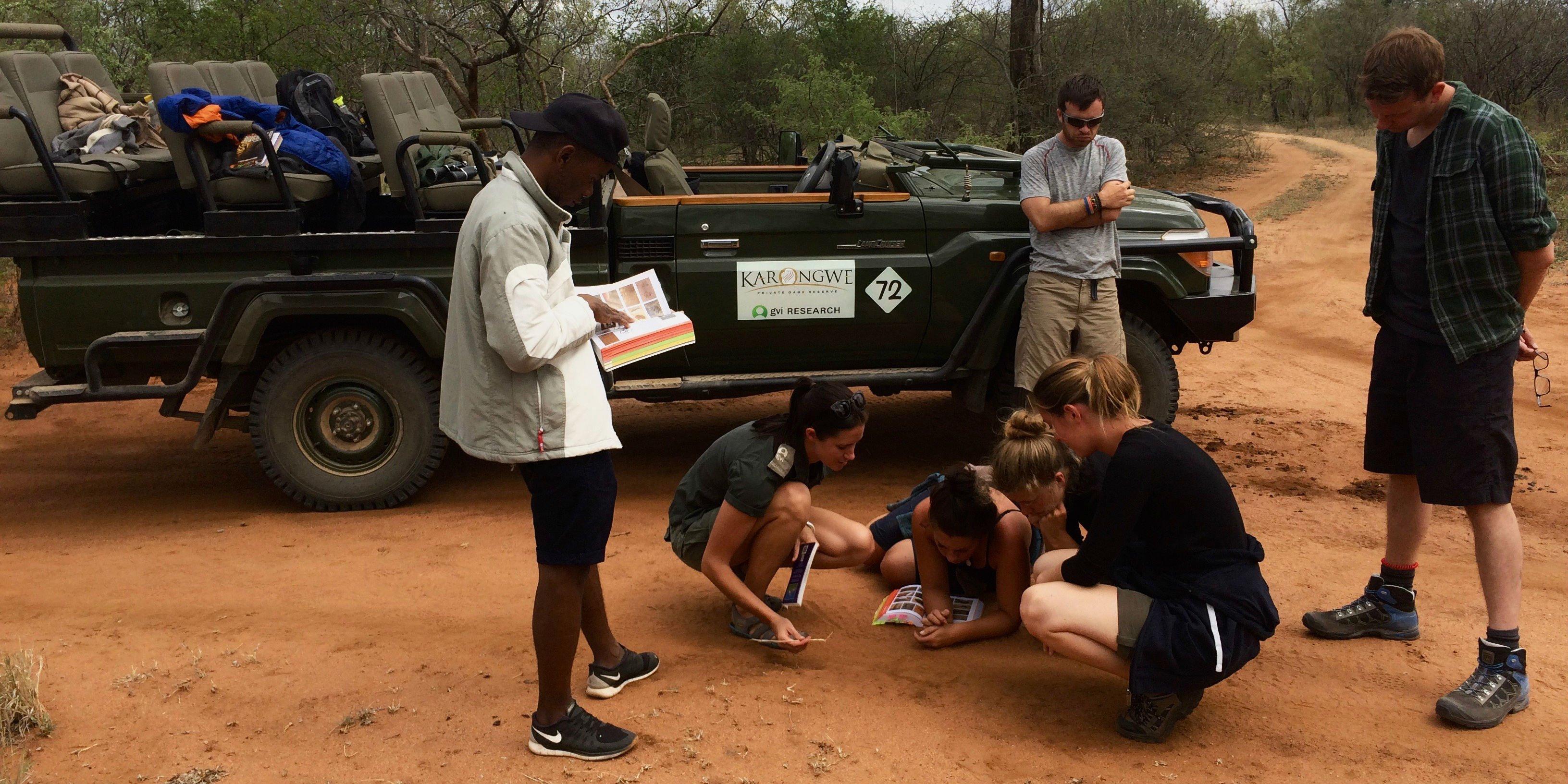 jobs in african wildlife conservation