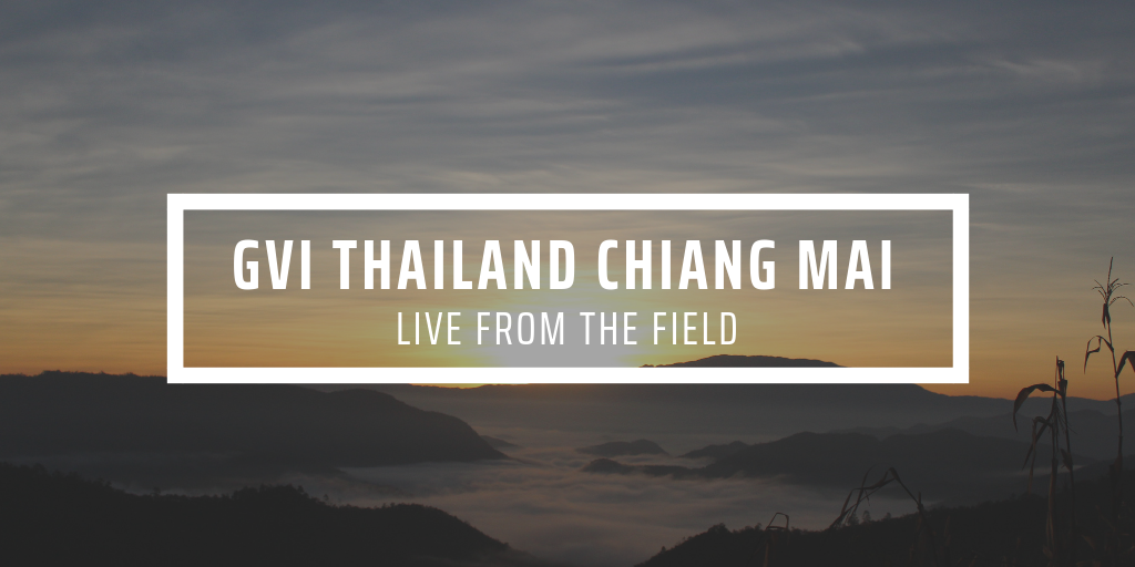 GVI Chiang Mai Update July 2019