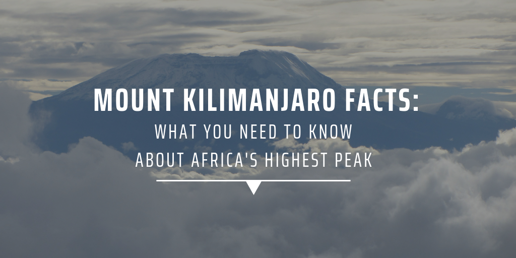 Mount Kilimanjaro facts: What you need to know about Africa's highest peak