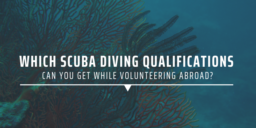 Which scuba diving qualifications can you get while volunteering abroad?