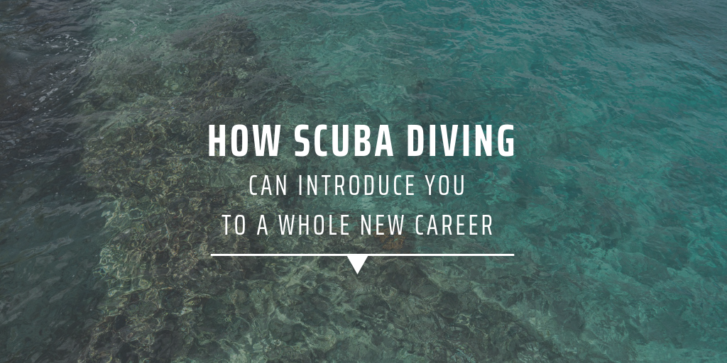 How scuba diving can introduce you to a whole new career