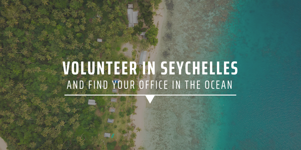 Volunteer in Seychelles and find your office in the ocean