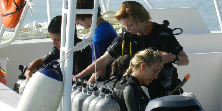 As part of their PADI dive certification, GVI participants complete mandatory dives, while contributing to marine conservation research.