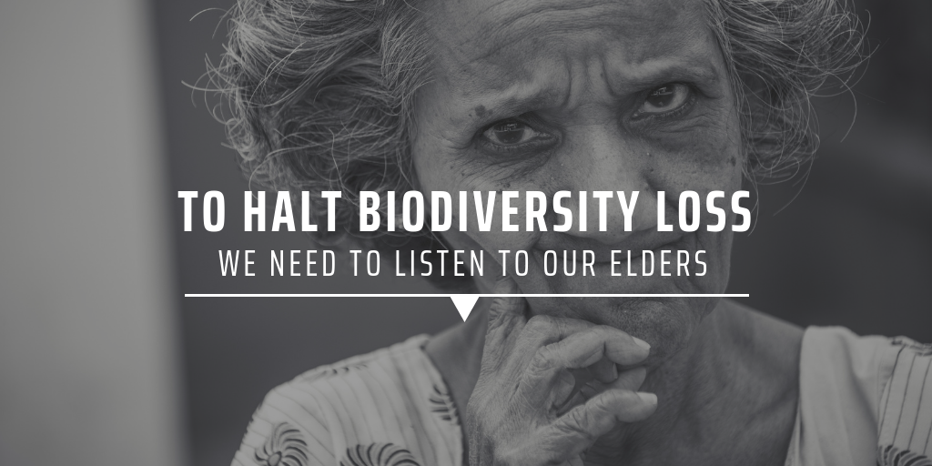 To halt biodiversity loss we need to listen to our elders