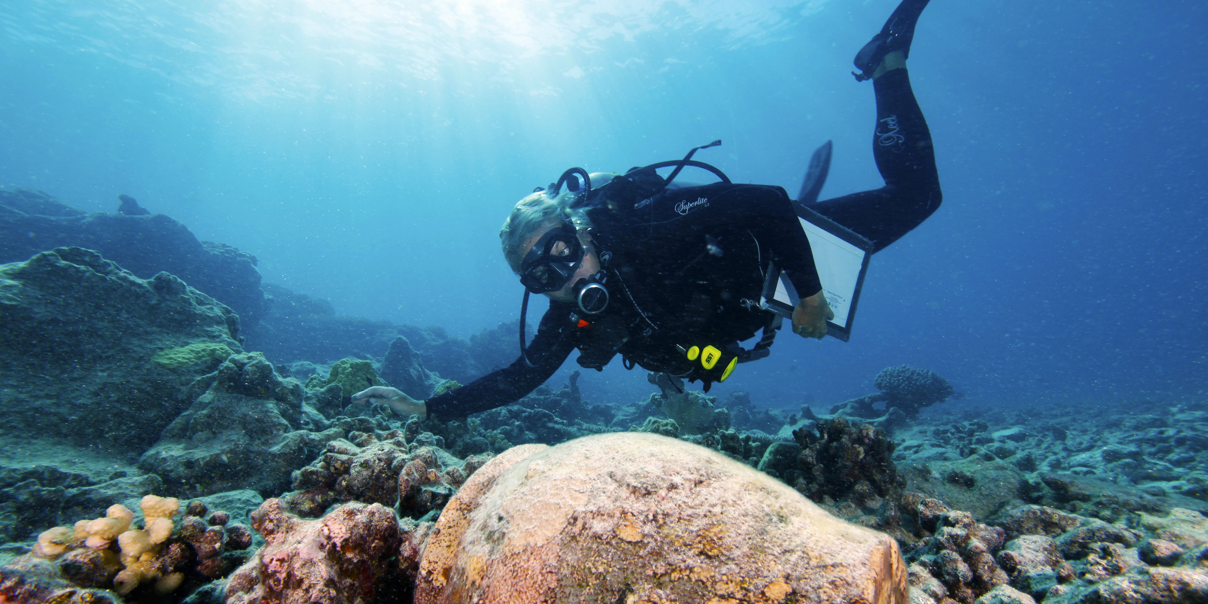 This marine archeologist studies a ginger jar from a shipwreck. Marine archaeology is one of many scuba diving jobs available to PADI pros.
