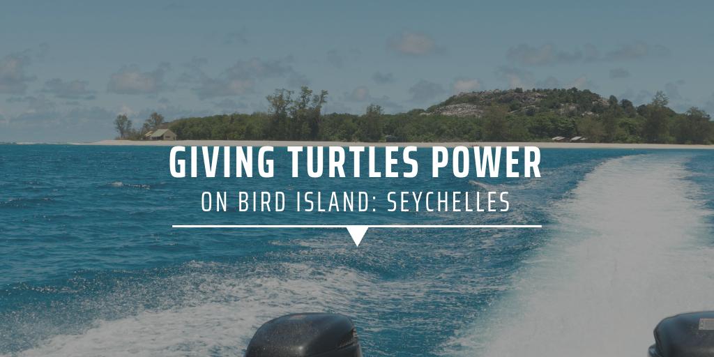 Giving turtles power on Bird Island: Seychelles