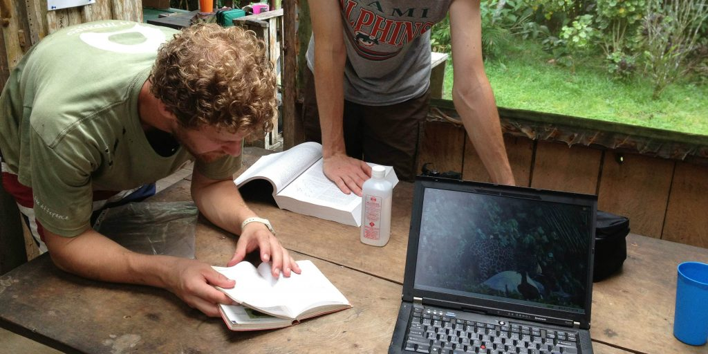 Looking for good places to volunteer? Why not assist with data collection with our wildlife conservation programs