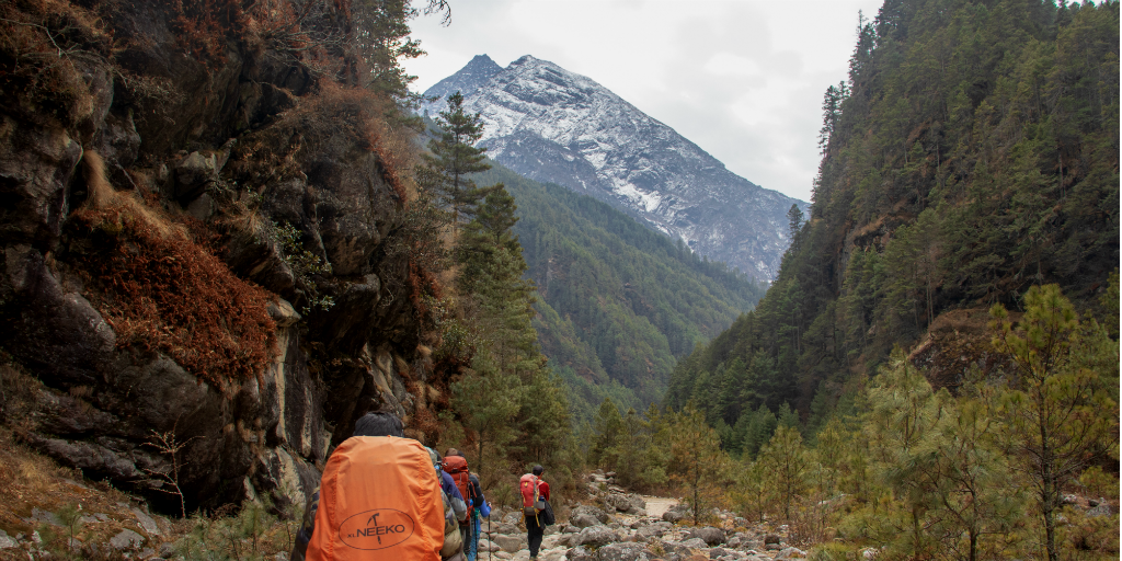Hikers trekking up a mountain trail with a mountain peak in the distance