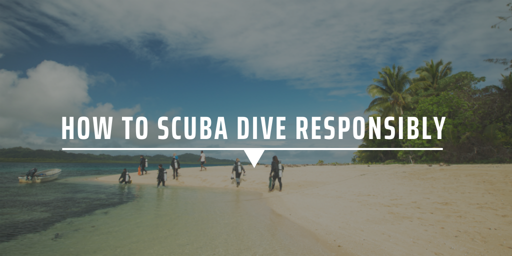 How to scuba dive responsibly
