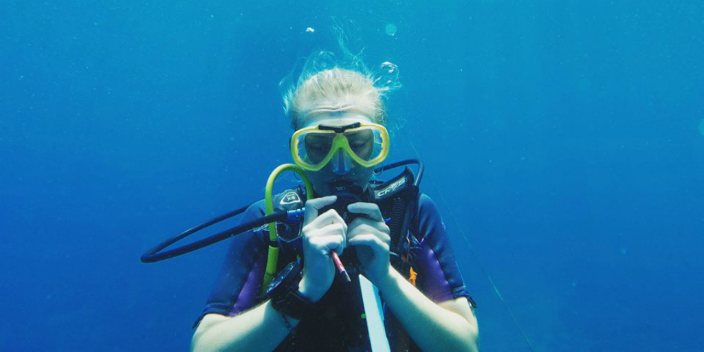 To become a padi professional, you need to be comfortable with being in the water alone