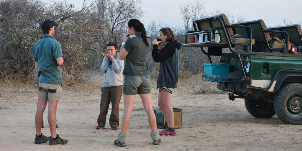 Volunteer abroad in South Africa and contribute to wildlife conservation efforts