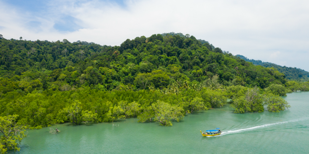Enjoy the tropical climate when you volunteer in thailand