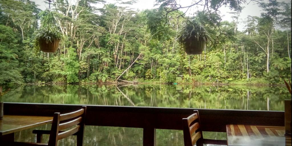 Si vous cherchez des choses amusantes à faire aux Fidji, explorez la forêt tropicale.