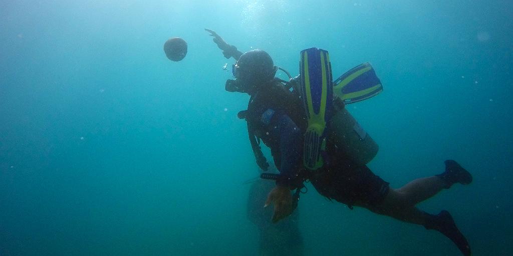 Les choses à faire aux Fidji incluent la plongée sous-marine.
