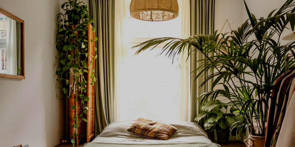 indoor plants can improve sleep