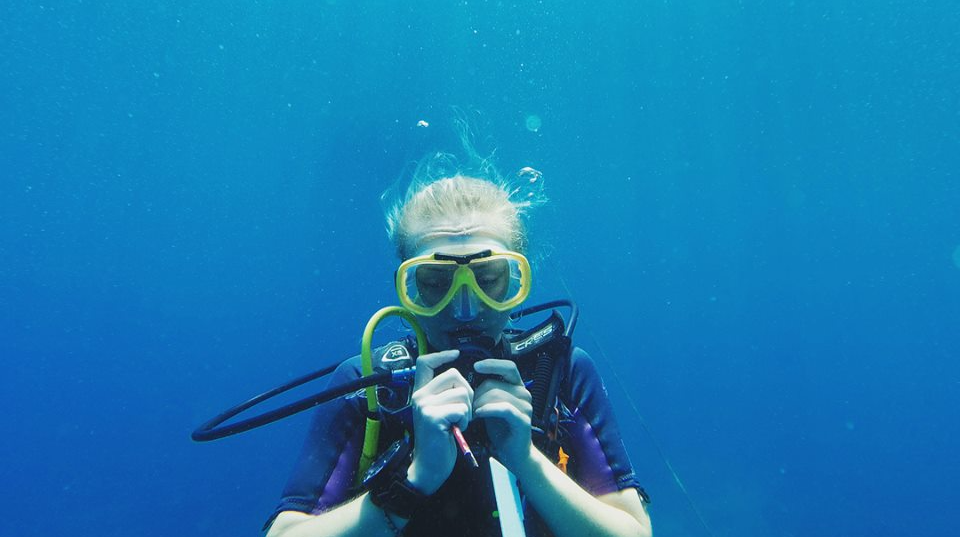 Marine conservation volunteering opportunities in Africa